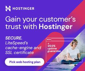 Hostinger Web Hosting Overview