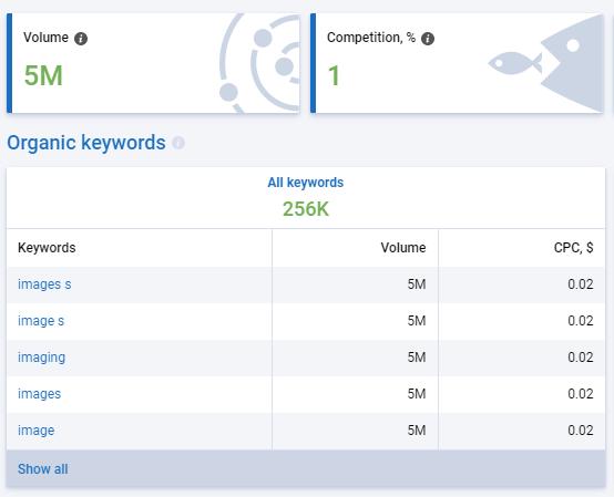 Serpstat Keyword Overview